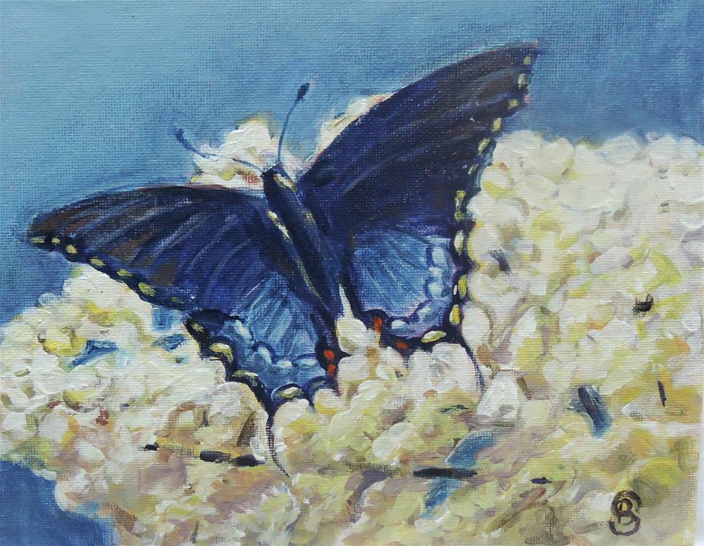 """""""Blue and White"""" original fine art by Belinda Scheber"""