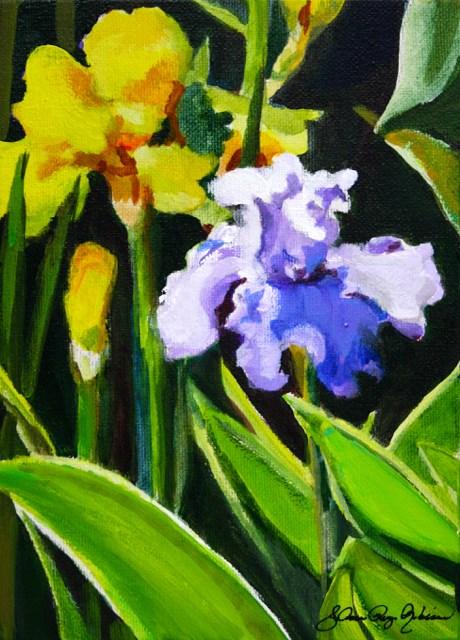 """Iris"" original fine art by JoAnne Perez Robinson"