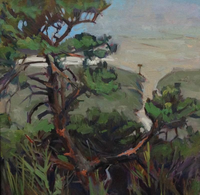 """Coastal Trees and Path"" original fine art by Patti McNutt"