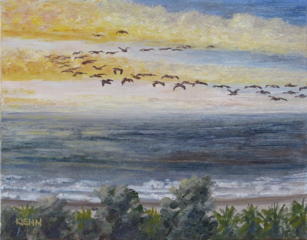 """Morning Commute on the Mexican Coast"" original fine art by Richard Kiehn"