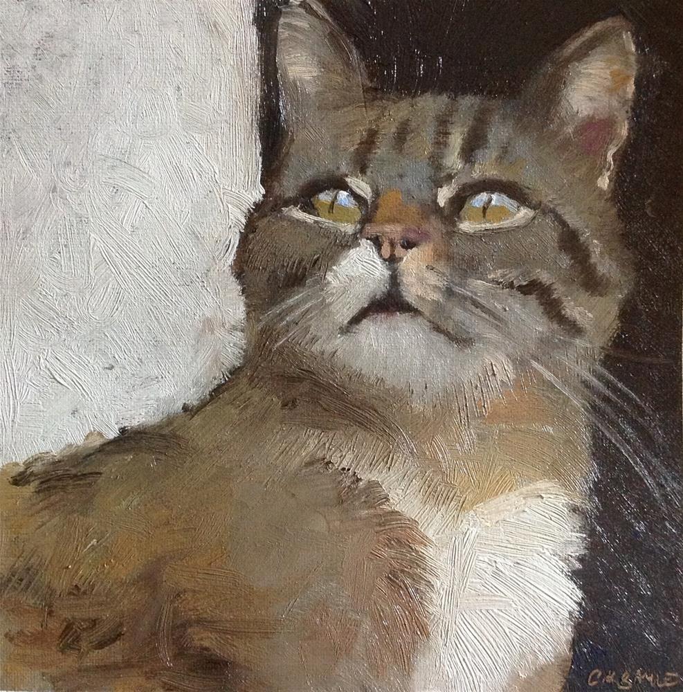"""My cat's portrait"" original fine art by Christine Bayle"