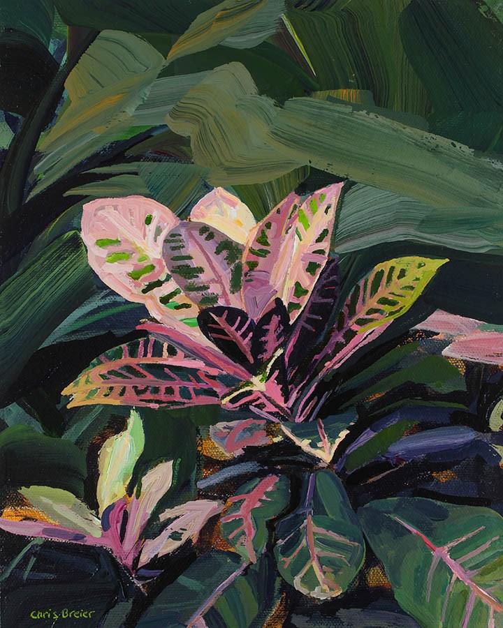 """""""Croton"""" original fine art by Chris Breier"""
