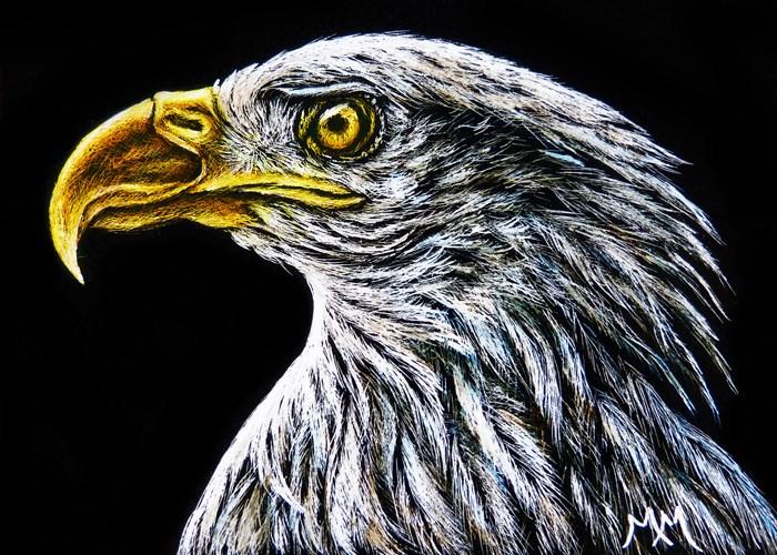 """""""Eagle - SA96"""" original fine art by Monique Morin Matson"""