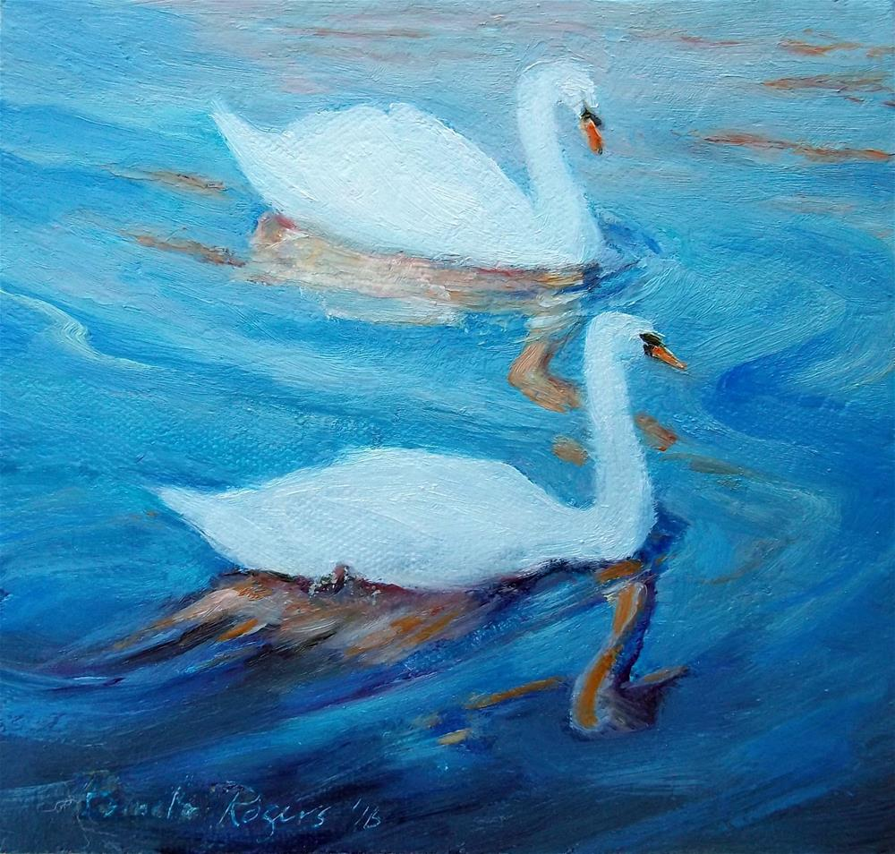 """""""Bruges Swans"""" original fine art by Pamela Jane Rogers"""