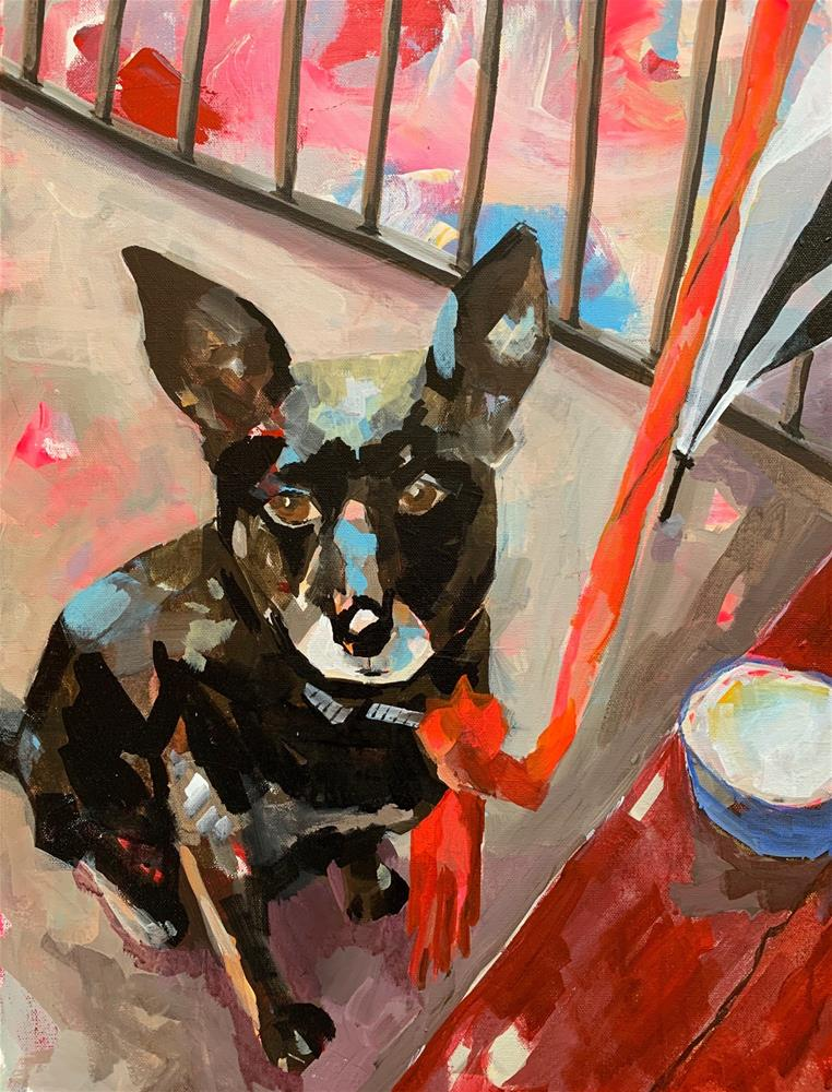 """683 Dog with Scarf"" original fine art by Jenny Doh"