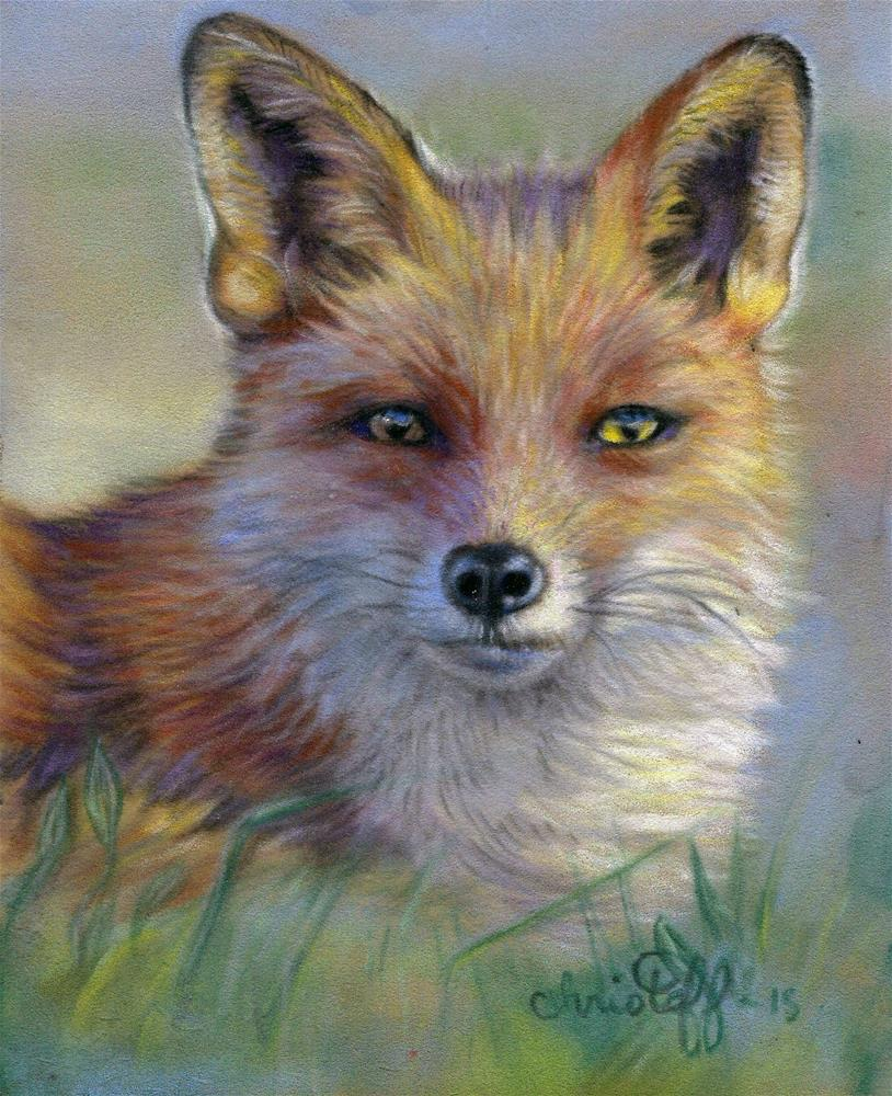 """""""Fox in the morning"""" original fine art by emily Christoff-Flowers"""