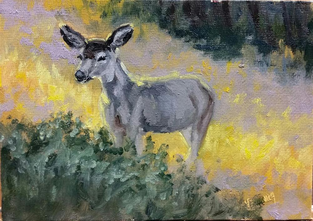 """Morning light-mule deer study 3"" original fine art by Veronica Brown"