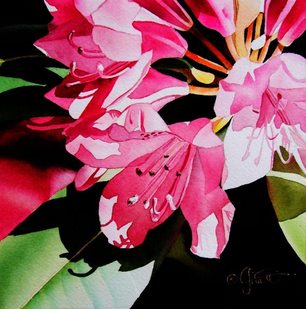 """""""Pink Rhodie"""" original fine art by Jacqueline Gnott, TWSA, WHS"""