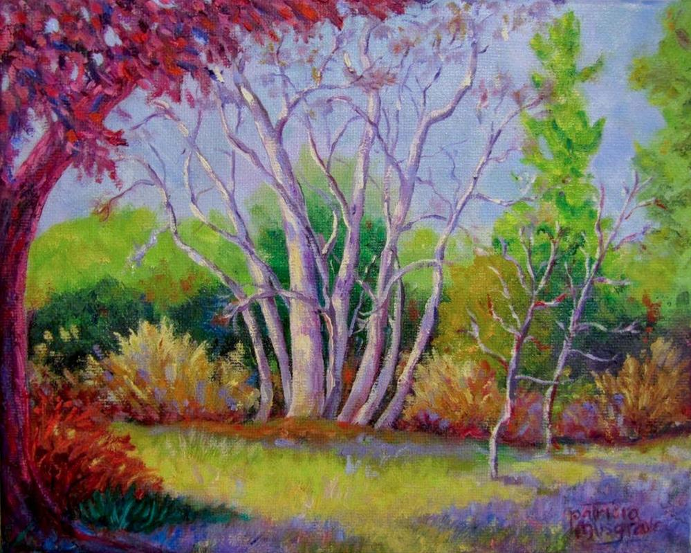 """""""Giant Sycamore"""" original fine art by Patricia Musgrave"""