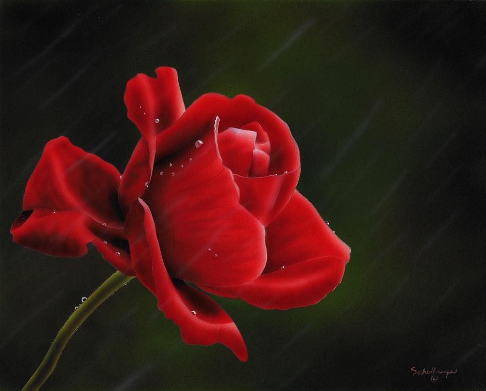 """Rainy Day Rose"" original fine art by Fred Schollmeyer"