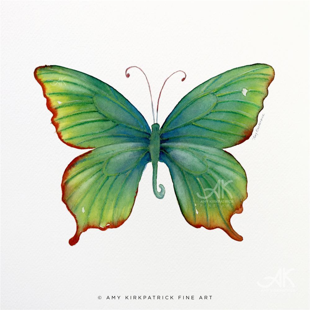 """#74 Green Flame Tip Butterfly #0384"" original fine art by Amy Kirkpatrick"