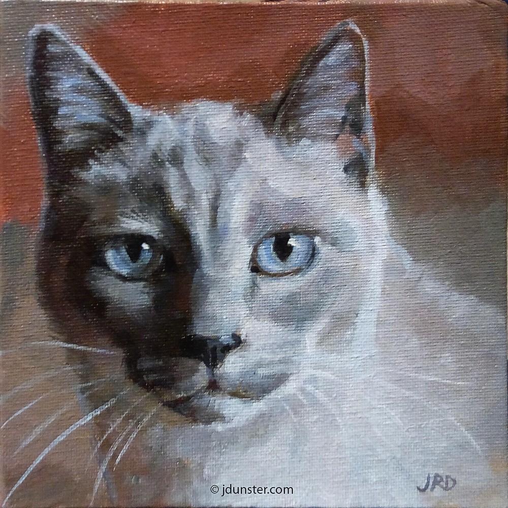 """Blue-Eyed Kitty"" original fine art by J. Dunster"