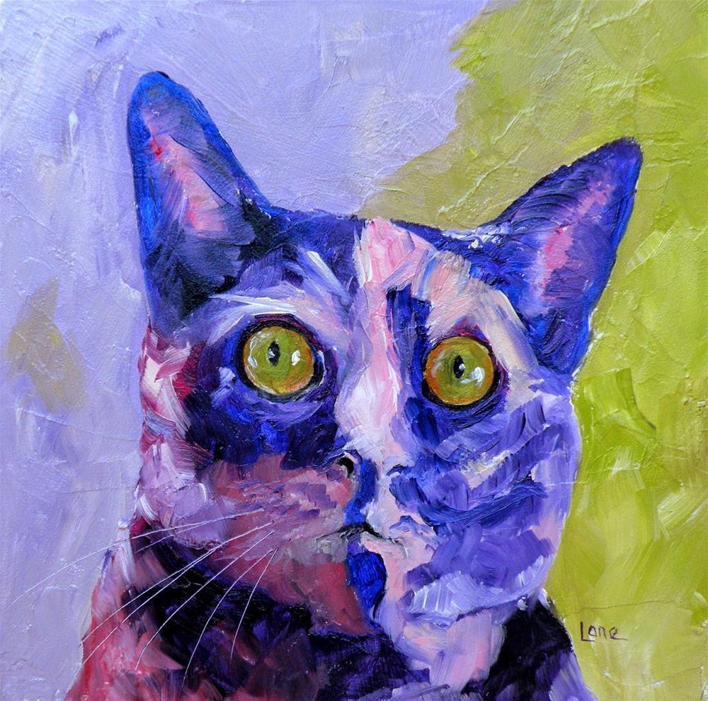 """SUSHI 7/100 OF 100 PET PORTRAITS IN 100 DAYS © SAUNDRA LANE GALLOWAY"" original fine art by Saundra Lane Galloway"