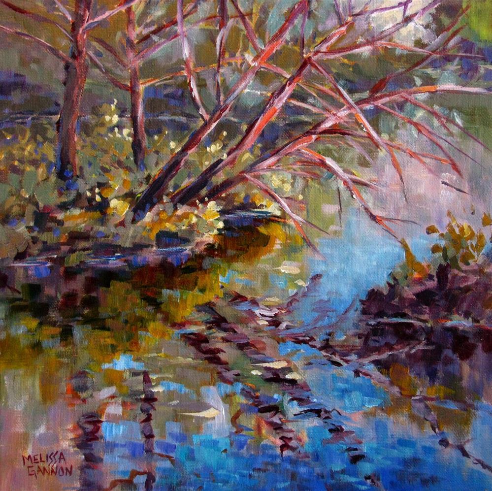 """Lake Reflections"" original fine art by Melissa Gannon"
