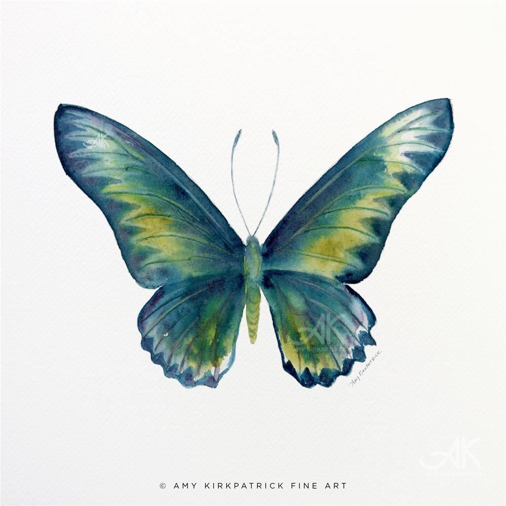 """""""#42 Blue Rajah Butterfly #0351"""" original fine art by Amy Kirkpatrick"""