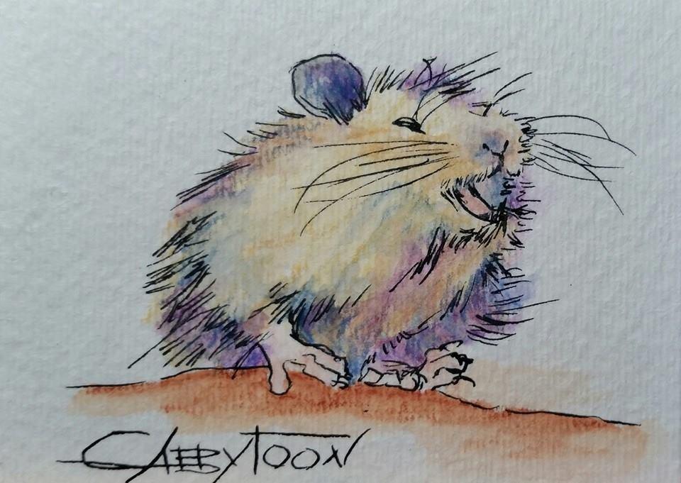 """Hamster (ACEO)"" original fine art by Gabriella DeLamater"