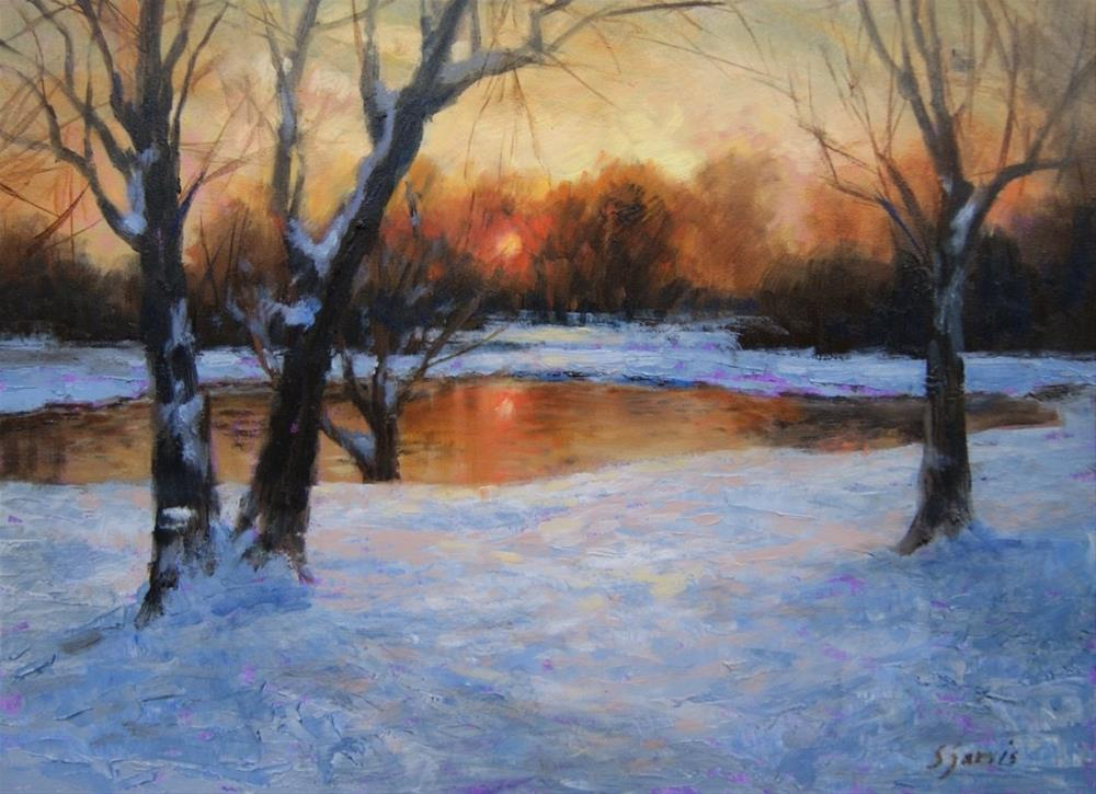 """""""January Frost"""" original fine art by Susan N Jarvis"""
