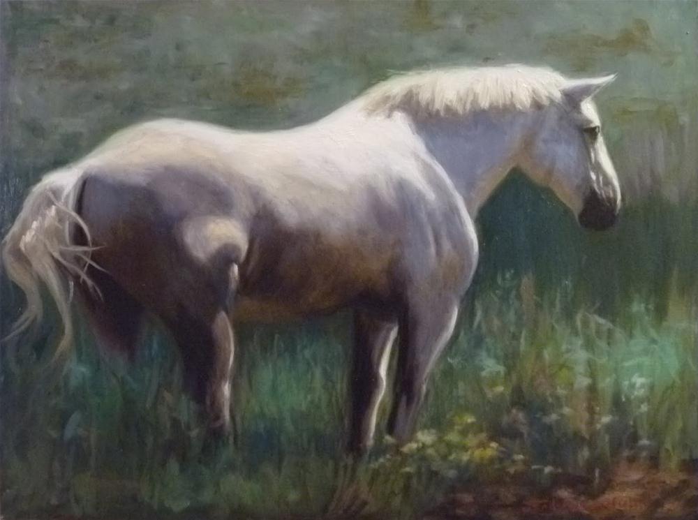 """""""Horse Portrait"""" original fine art by Jonelle Summerfield"""