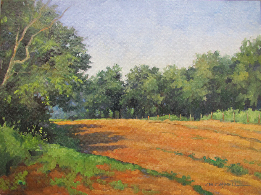 """SUMMER SHADOWS Original Plein Air Oil Painting by Claire Beadon Carnell"" original fine art by Claire Beadon Carnell"