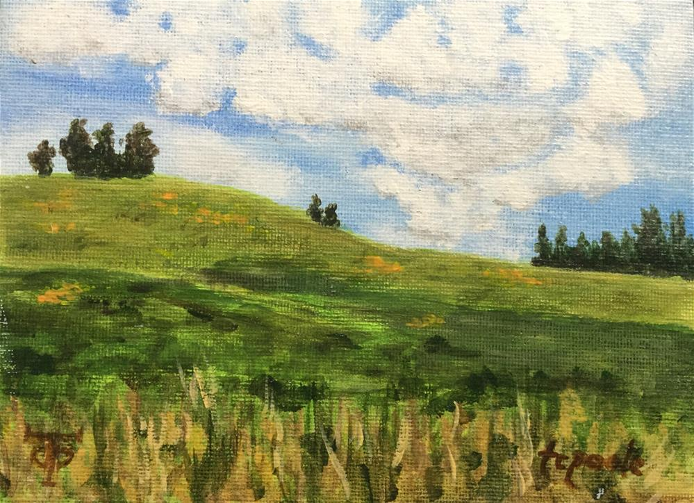 """Cloud Shadow"" original fine art by T.C. Poole"