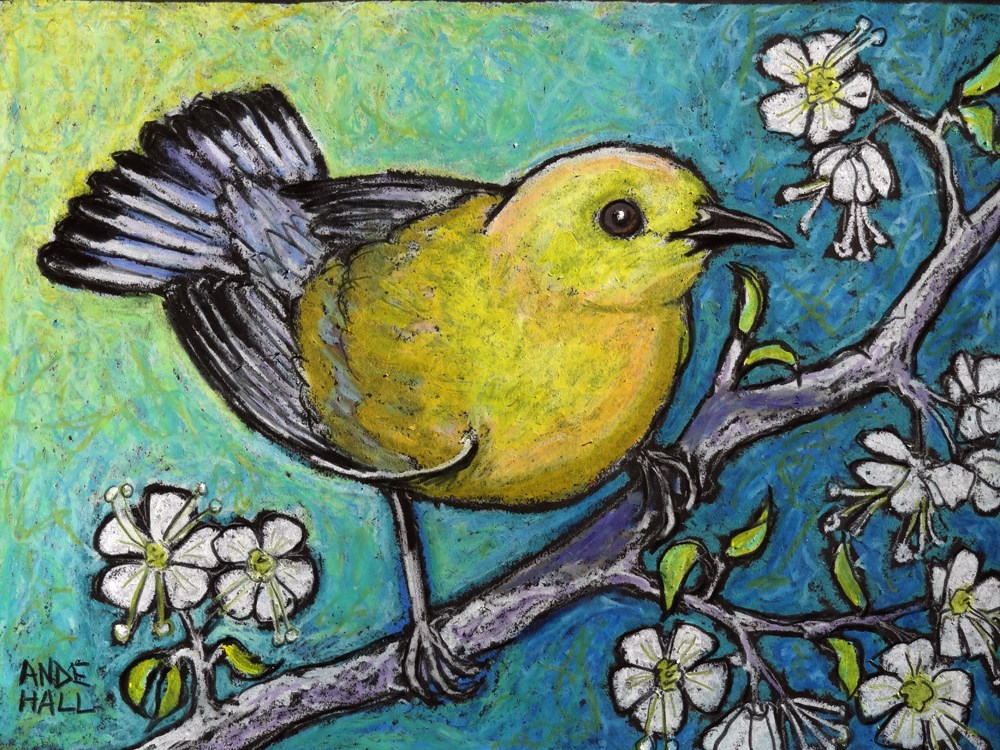 """Prothonotary Warbler Revisited"" original fine art by Ande Hall"