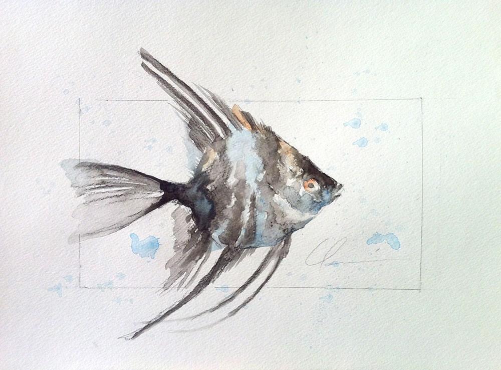 """""""Angelfish"""" original fine art by Clair Hartmann"""