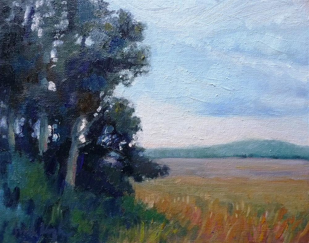 """Fields in the Distance"" original fine art by Lisa Kyle"