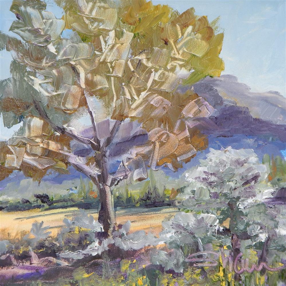 """""""Sonoran Scene"""" original fine art by Shawn Deitch"""