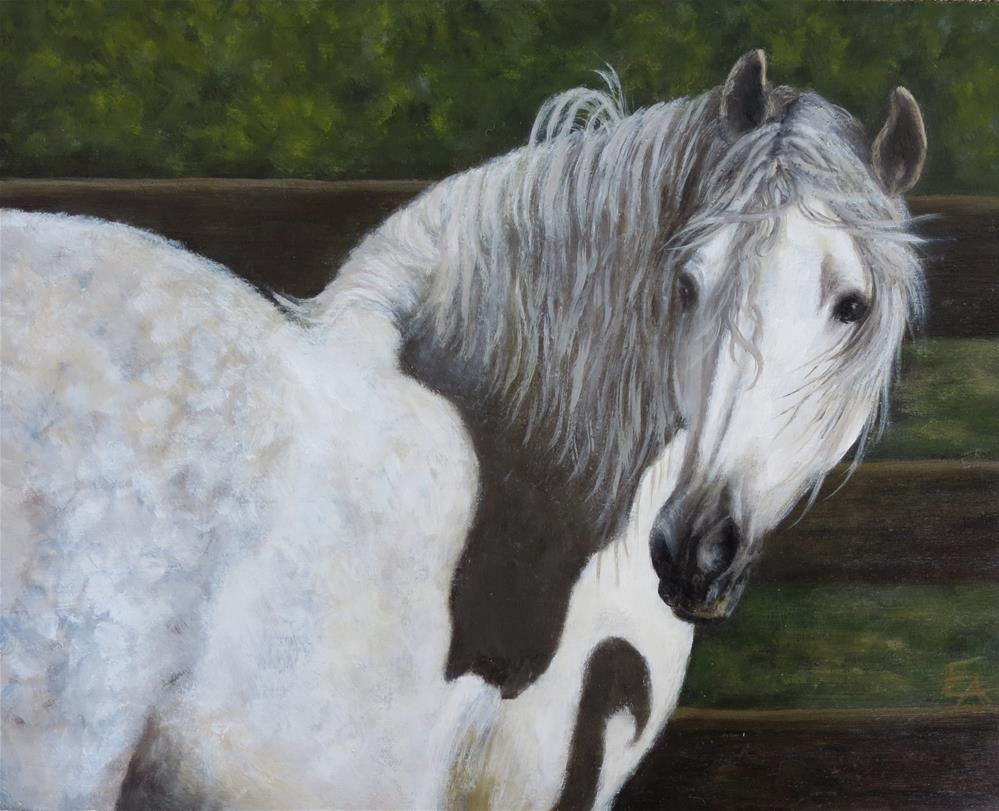 """Horse in Sunlight"" original fine art by Elizabeth Elgin"