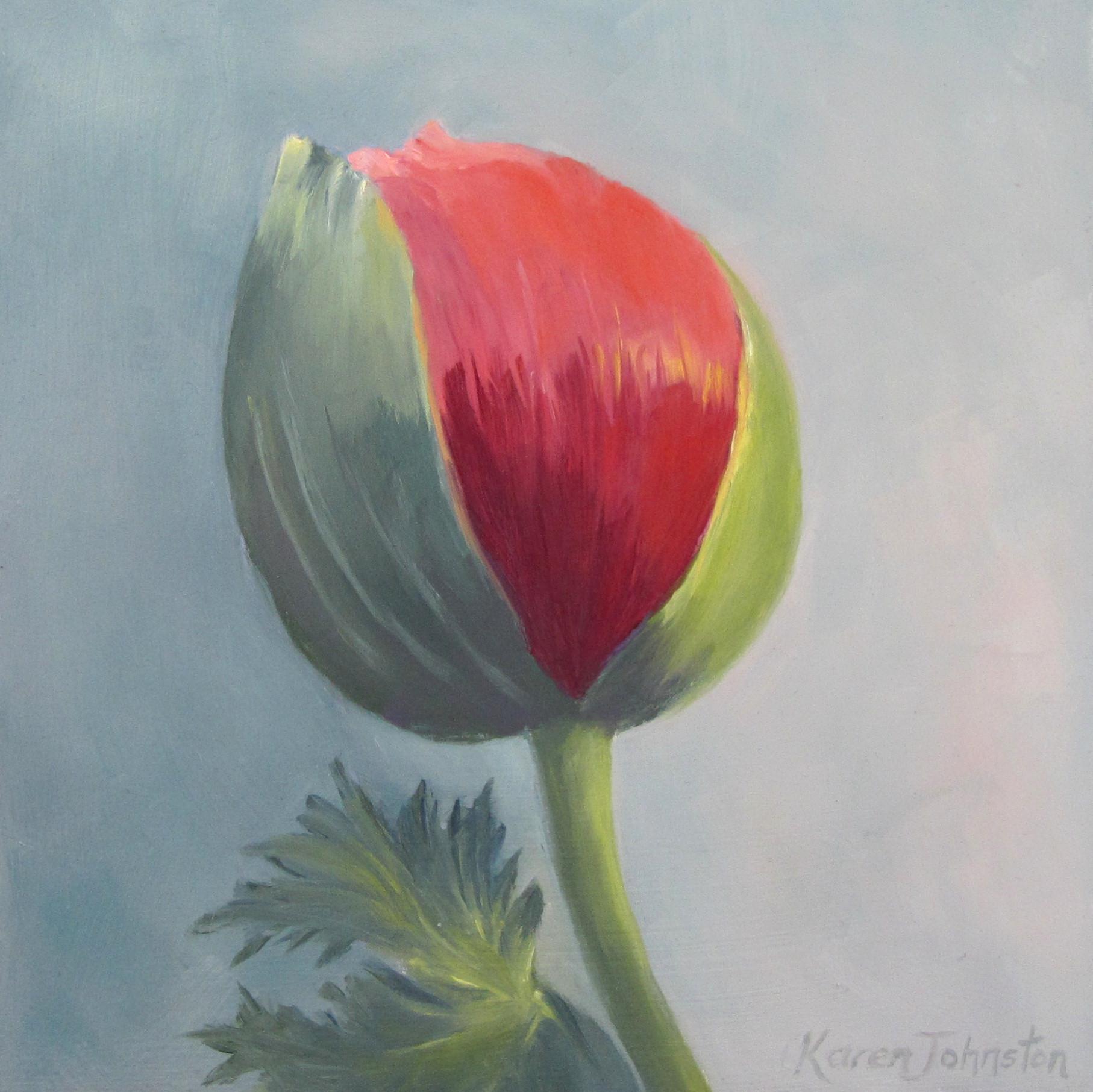 """""""Poppy Bud"""" original fine art by Karen Johnston"""