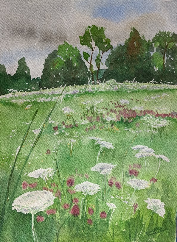 """Summer Field"" original fine art by Annemiek Haralson"