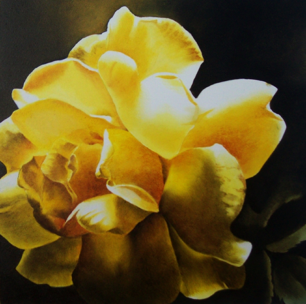 """Last Light, Yellow Rose"" original fine art by Jacqueline Gnott, TWSA, WHS"