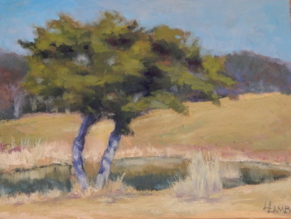 """Tree Study"" original fine art by Lori L. Lamb"