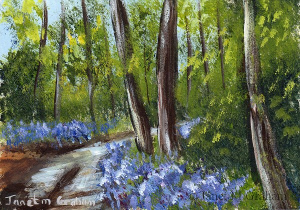"""""""Bluebell Trail ACEO"""" original fine art by Janet Graham"""