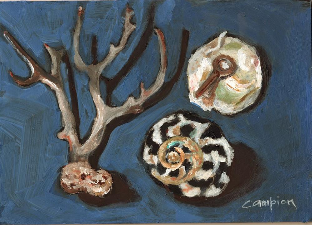 """""""389 Sea Treasures"""" original fine art by Diane Campion"""