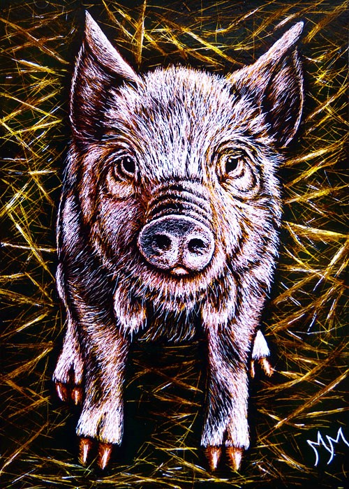 """Piggy"" original fine art by Monique Morin Matson"