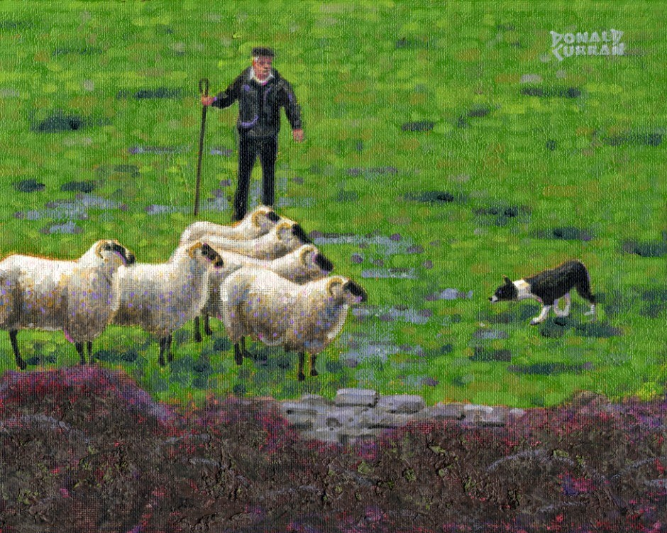 """Irish Shepherd"" original fine art by Donald Curran"