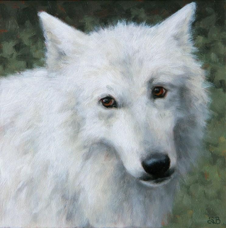 """Atka"" original fine art by Sarah Becktel"