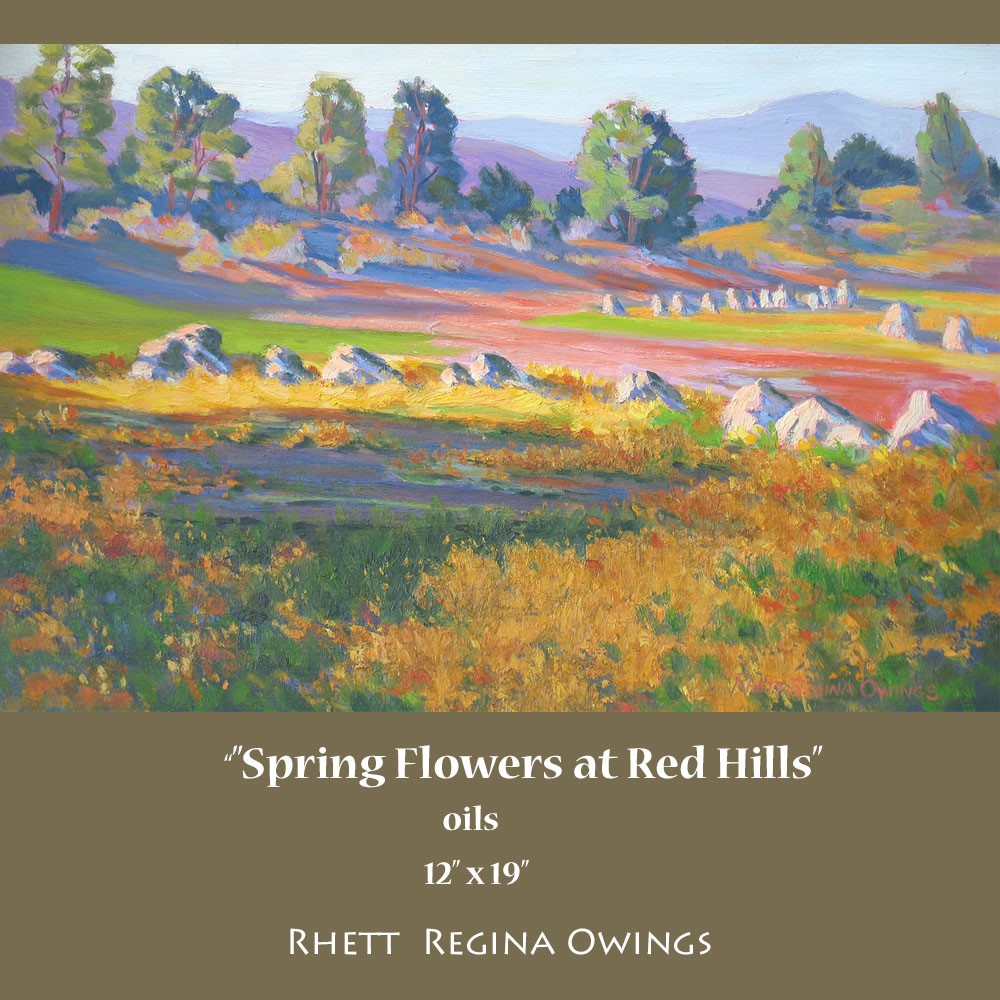 """Spring Flowers at Red Hills"" original fine art by Rhett Regina Owings"