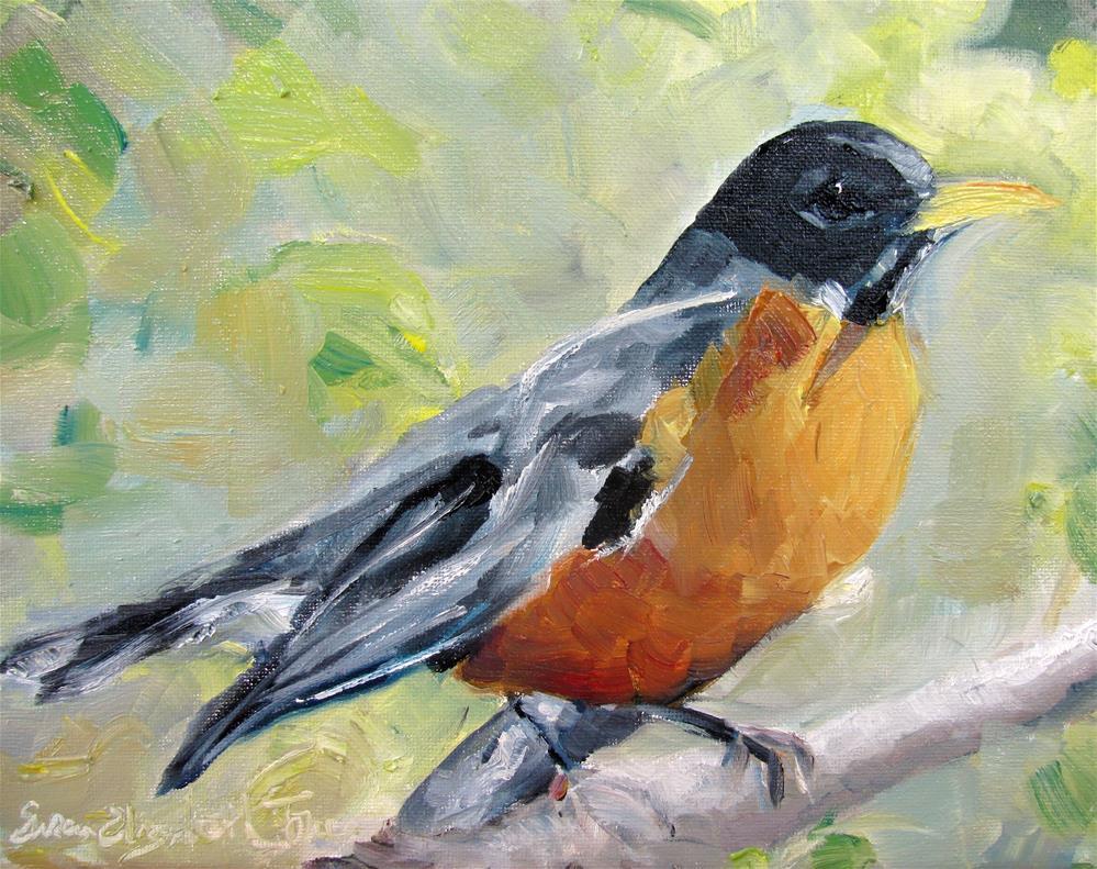 """American Robin"" original fine art by Susan Elizabeth Jones"