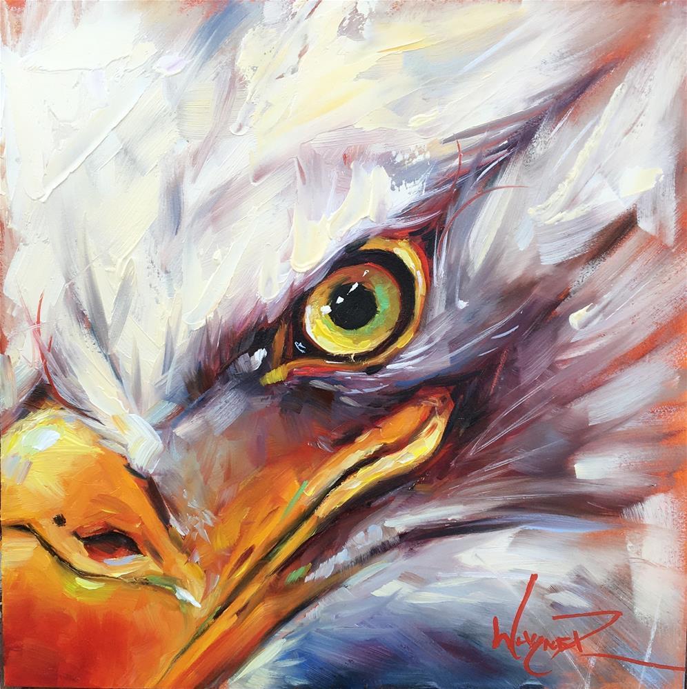 """""""Eagle Eye"""" original fine art by Olga Wagner"""