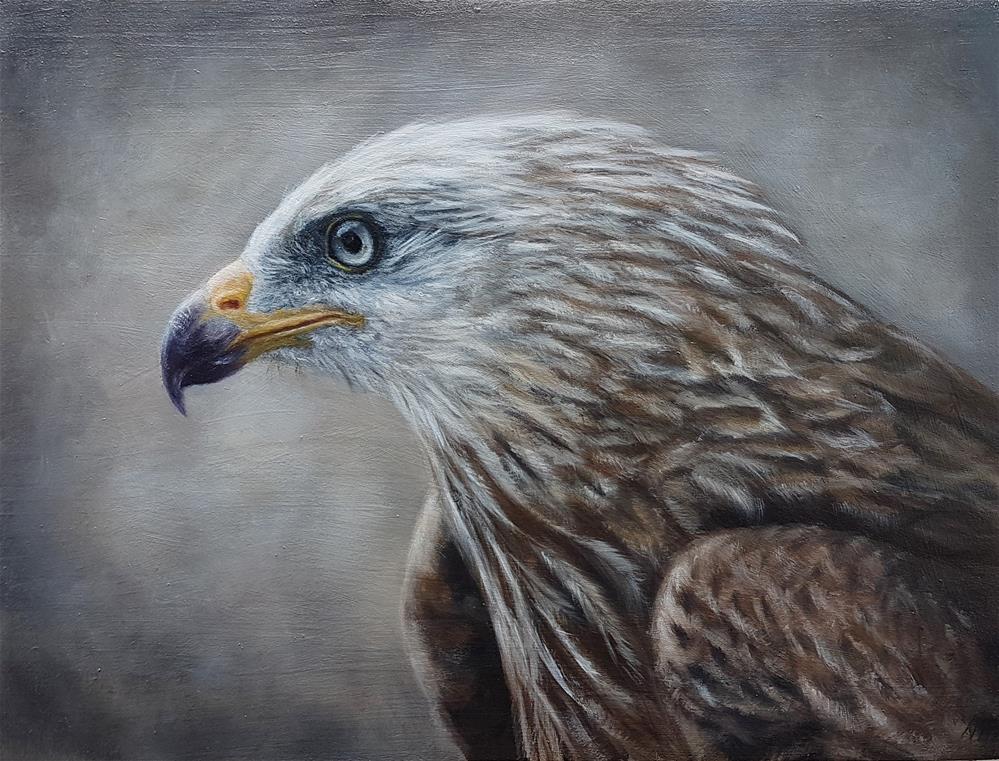 """Red kite "" original fine art by Nikolina Primorac"