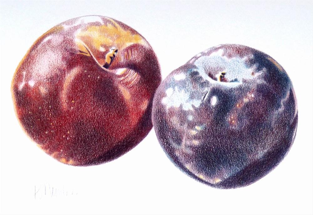 """Plums"" original fine art by Barbara Benedetti Newton"