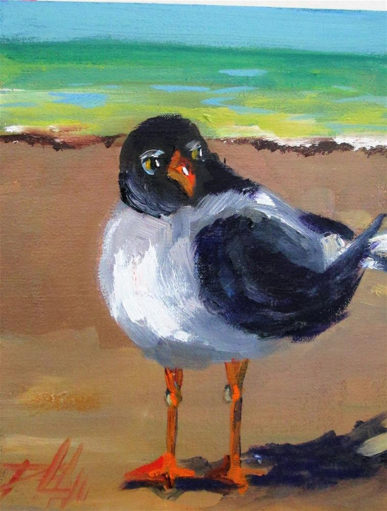"""Beach Gull"" original fine art by Delilah Smith"