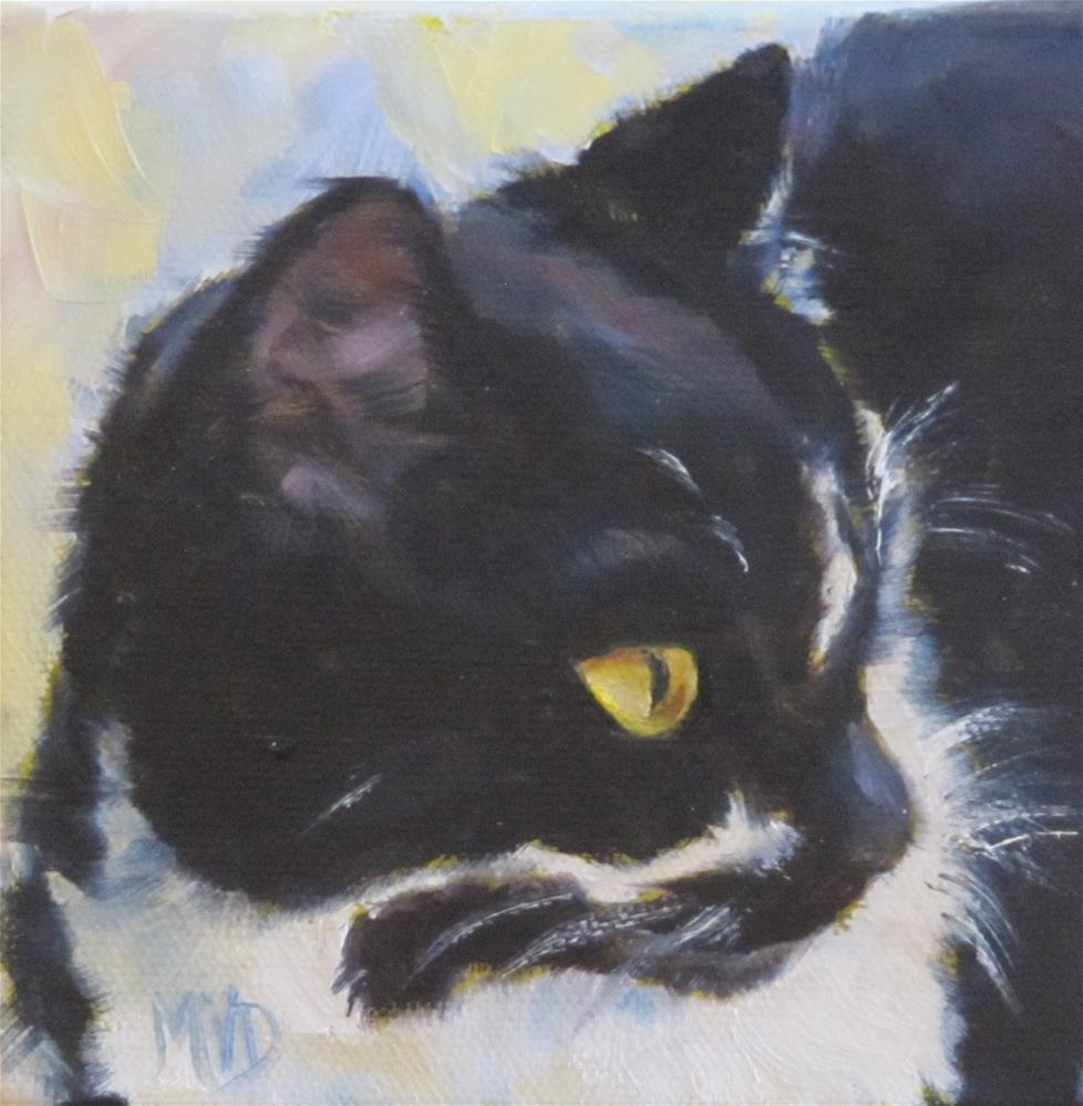 """Tuxedo"" original fine art by Mary Van Deman"