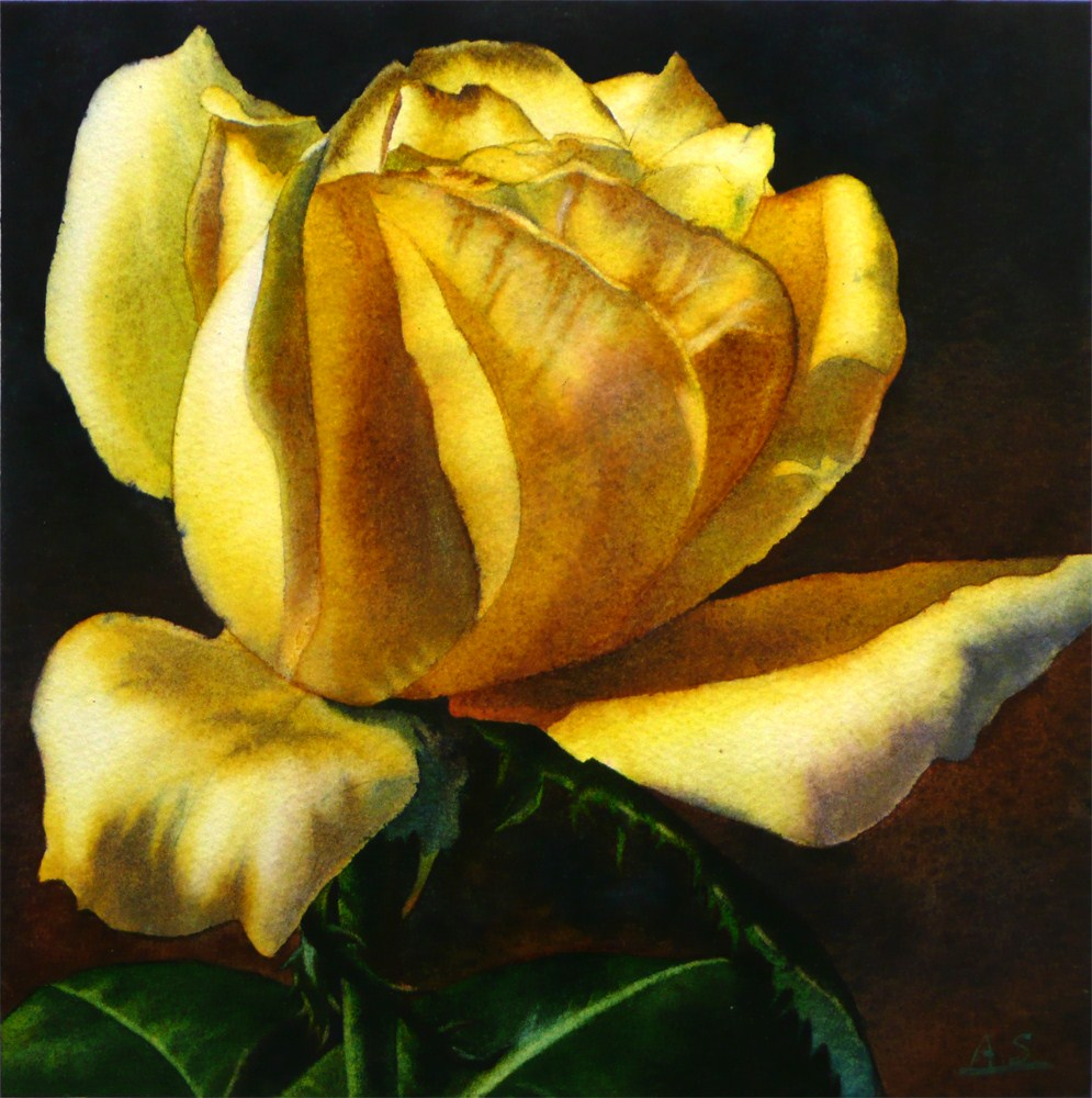 """""""Yellow Rose"""" original fine art by Arena Shawn"""