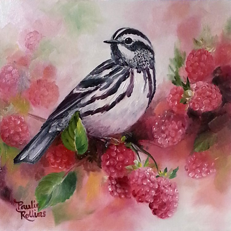 """Zebra in the Raspberries"" original fine art by Paulie Rollins"