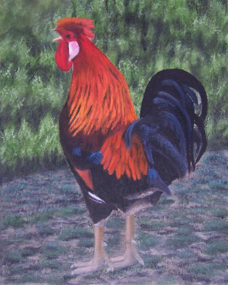 """Cocky Rooster"" original fine art by John Marcum"