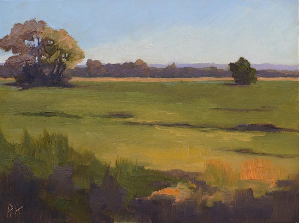 """""""Fall Fields 2"""" original fine art by Rebecca Helton"""