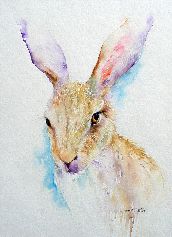 """Wild Thing _ Brown Hare Portrait"" original fine art by Arti Chauhan"
